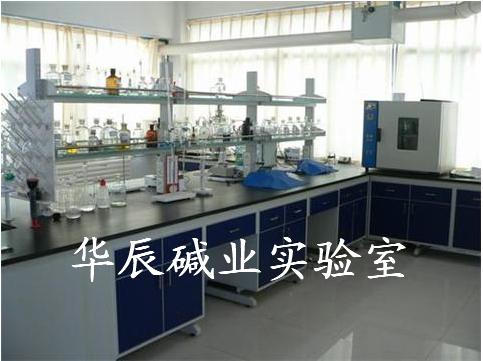 华辰碱业实验室