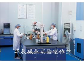 华辰碱业实验室作业