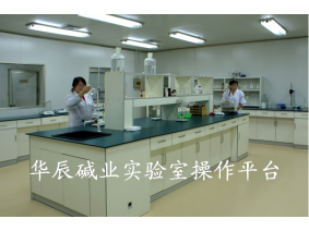 华辰碱业实验室操作平台